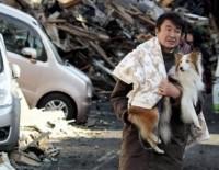 Спасение собак после цунами в Японии (2011 год)